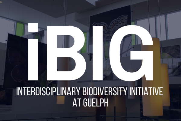Photo introducing iBIG at Guelph