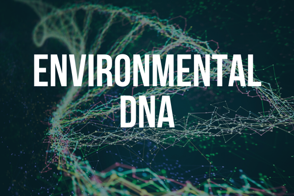 Image introducing environmental DNA.