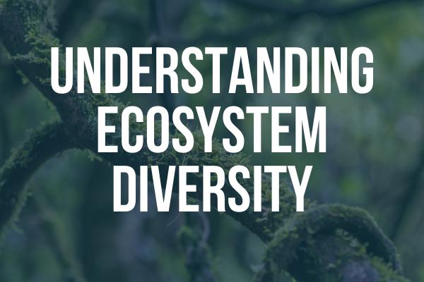 Image that states Understanding Ecosystem Diversity
